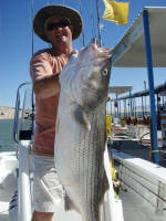 47 lbs Striper by Jim Thompson