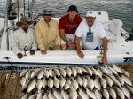 Whitebass Fishing